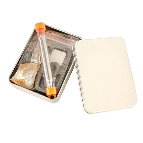 XUELIEE Mini kit de Survie pour Le Camping en Plein air - Kit de Survie Essentiel pour Allume-feu de Camping