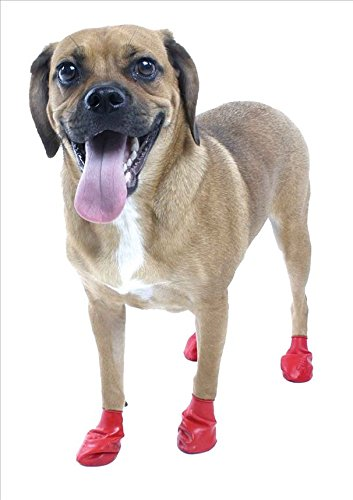 Pawz Waterproof Dog Boots, Small 2