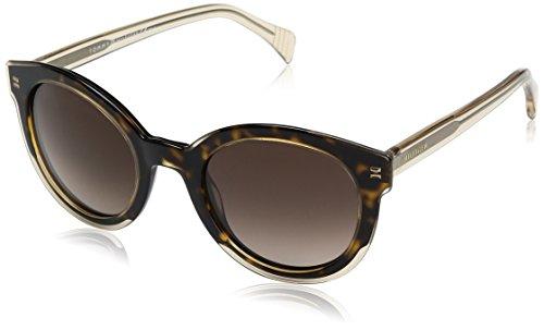 Tommy Hilfiger Damen TH 1437/S J6 KY1 50 Sonnenbrille, Gelb (Yllw Beig/Brown),