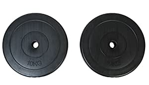 vidaXL Weight Plates 2x10kg Home Gym Fitness Training Dumbbell Barbell Disc