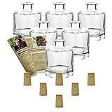 gouveo 6er Set Flasche Tom inkl. Spitzkorken, Likörflaschen, Schnapsflaschen, Essigflaschen, Ölflaschen