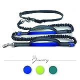 Jamory Handfrei Leine Führleine Zugleine Hund reflektierend Zubehör (Blau)