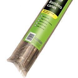 Gardman - Paquete de cañas de bambú (20 unidades, 120cm)