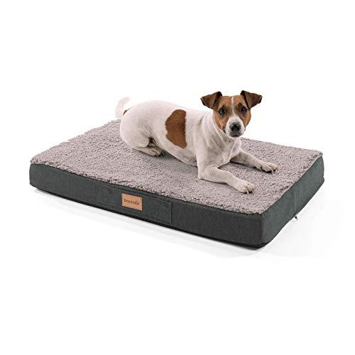 brunolie Balu Hundebett, waschbar, orthopädisch und Rutschfest, Hundekissen mit kuscheligem Plüsch, Größe S, Grau