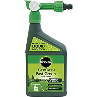 Miracle-Gro EverGreen Fast Green Spray & Feed 1L