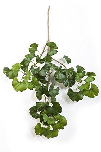 artplants - Deko Ginkgo Sweet Zweig mit 50 Blättern, grün, 60 cm - Kunst Blätter Zweig / Ginko Zweig künstlich