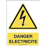 AUA SIGNALETIQUE - Autocollant ISO 7010 Danger, Electricité W012-AI - 75x105 mm, Vinyl adhésif