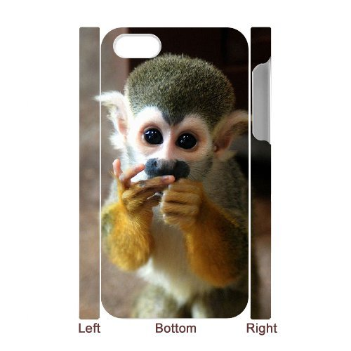 LP-LG Phone Case Of Monkey For Iphone 5C [Pattern-6] Pattern-1