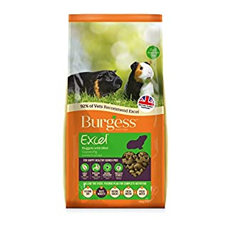 Burgess Excel Guinea Pig Nuggets with Mint, 10kg 12