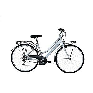 41yd8wm13SL. SS300 Coppi Londra, Bicicletta da Città Donna, Grigio, M