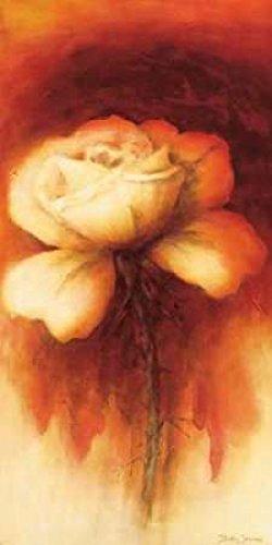 Betty Jansma – Roses I Kunstdruck (25,40 x 50,80 cm) (Roses Jansma Betty)
