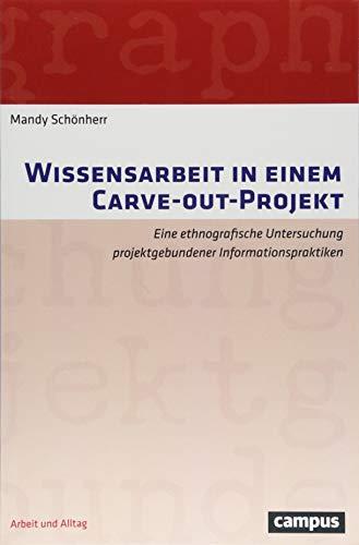 Wissensarbeit in einem Carve-out-Projekt: Eine ethnografische Untersuchung projektgebundener Informationspraktiken (Arbeit und Alltag)