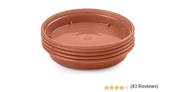 Whitefurze G04114 Lot de 5 soucoupes pour Pot de Fleurs Terre Cuite 7,5//10/cm