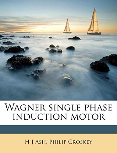 Wagner Single Phase Induction Motor