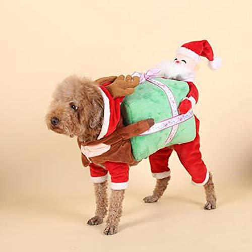 Fett Streifen-baumwoll-shirt (LIBWX Hundekostüm - Tragen Kürbis Puppe Haustier Katze Kostüme Lustige Halloween Party Urlaub Outfit,B)