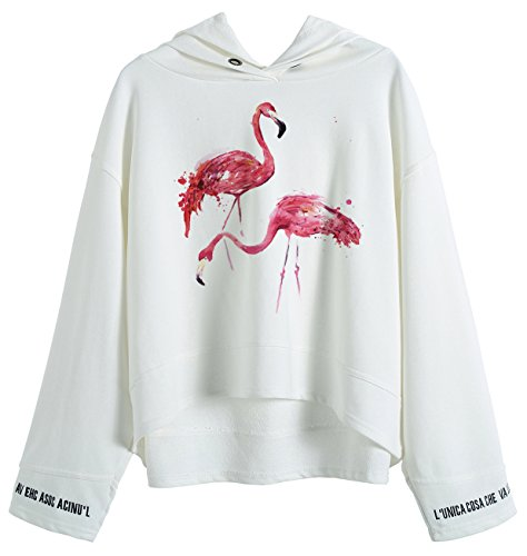 So'each Women's Animal Flamingo Graphic Hoodie Sweatshirt Batwing Pullover (Hoodie Zebra Sweatshirt)
