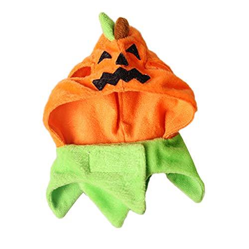 Hund Katze Hut Mütze Kappe Stirnband Kopfbedeckung für Halloween Party - Typ 1 ()