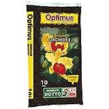 Terriccio per Orchidee 10L