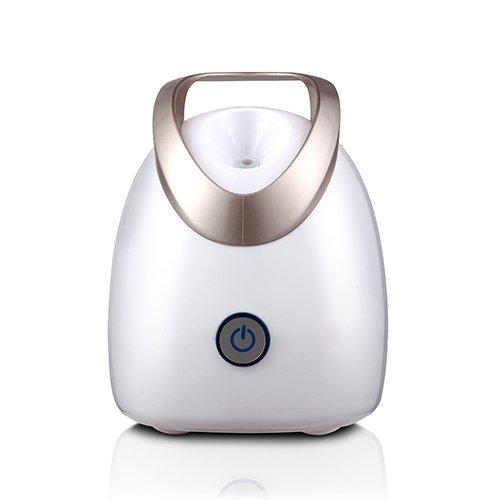 Eco Master Sauna Facial - Dispositivo De Belleza Iónica- Vaporizador Para El Cuidado De La Cara - Hidrata y Limpia El Rostro - Humificador