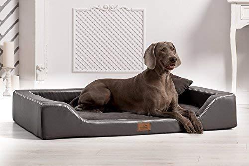 TIERLANDO Orthopädisches Hundebett Melody Latex Kunstleder und High-Tech Velours (MDY6-TL | 150x100 cm (Innen 130x80 cm), 02 | Graphit)