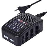 SkyRC E3 Noir Chargeur de Batterie Domestique - Chargeurs de Batterie (100-240 V,...