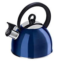 Oggi Stainless Steel Whistling Tea Kettle with Flip Open Spout, Blueberry