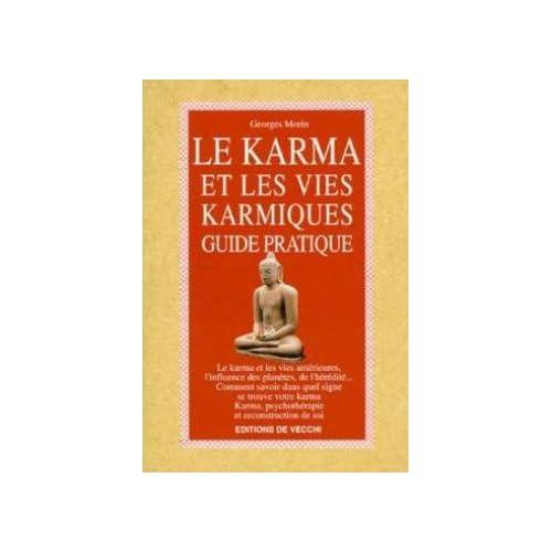 LE KARMA ET LES VIES KARMIQUES. Guide pratique
