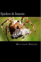 Spiders & Insects: Two Fascinating Books Combined Together Containing Facts, Trivia, Images & Memory Recall Quiz: Suitable for Adults & Children (Matthew Harper) by Matthew Harper (2014-07-13)