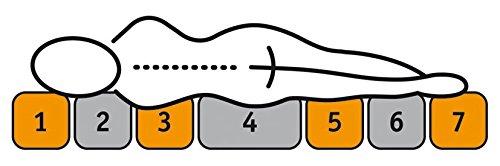 f.a.n. Frankenstolz, Härtegrad 3, Emil KS 7-Zonen-Ortho-cel-Kaltschaumkern-Matratze, Polyester-Baumwolle, weiss, 200 x 90 x 22 cm, Stiftung Warentest - 3