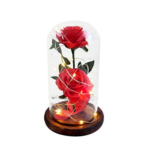e5111f65876d Etopfashion Beauty and The Beast Red Rose Scenery Cubierta de Cristal  Artificial Led en una cúpula
