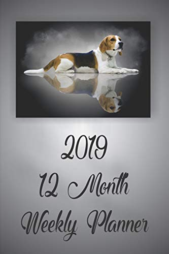 2019 12 Month Weekly Planner: 1 Year Daily/Weekly/Monthly Planner, January 2019-December 2019, Beagle Dog Cover (Snoopy-angel)