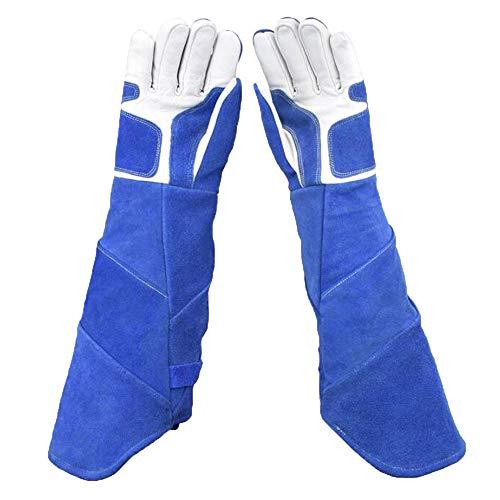 ANHPI,Anti-Tier Anziehende Handschuhe, Langer Verdickender Hund, Haustierschlangenhaustier, Schützende Handschuhe,Blue-L (Tier Schützende)