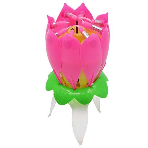Gosear-Vela de cumpleaños musical / Giratorio Loto en forma de velas / Vela de flor de Feliz cumpleaños