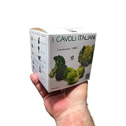 kit cavoli e semi italiani mix di benessere 6 differenti specie di semi per il tuo pollice verde ottimo regalo