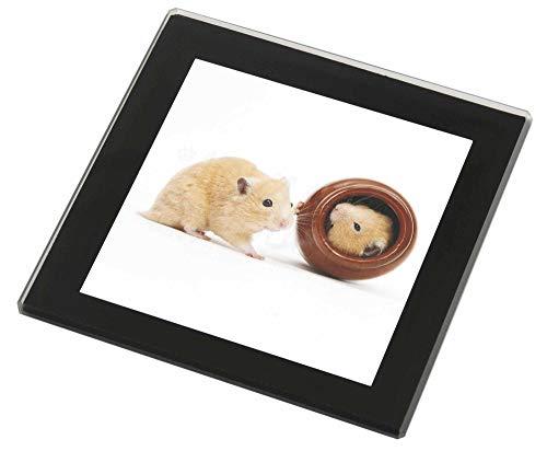 ters Hamster in Spielen Pot Glasuntersetzer mit schwarzem Rand ()