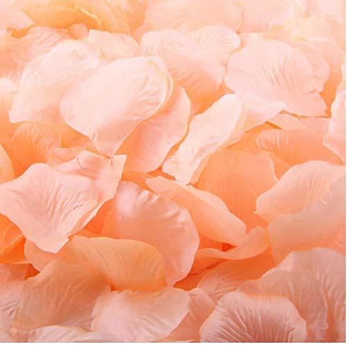 Romantische Rose Peach (Gamloious Großhandelslos 3000 PCS Peach Farbe Silk Rosenblätter Hochzeit Blumendekoration Wf-035)