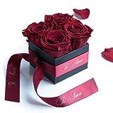ROSEMARIE SCHULZ Heidelberg Ti Amo - Rosenbox mit Infinity Rosen haltbar 3 Jahre/Flowerbox / ti amo Geschenk zum Valentinstag/Geschenkbox für Frauen / 8,5 x 8,5 cm (Ti Amo, Dunkelrot)