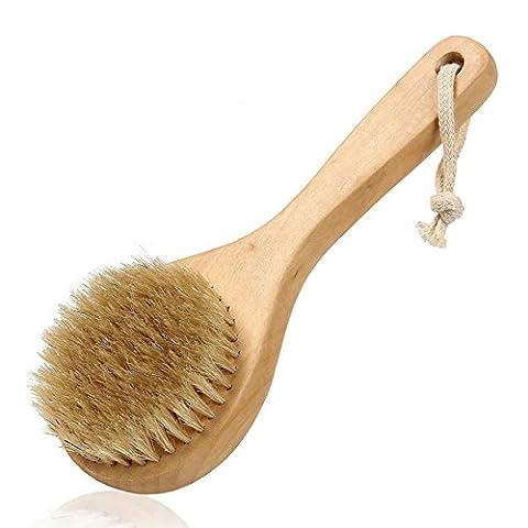 vinmax Lange Griff Holz trockene Haut Bad Dusche Körper Zurück Spa Bürste mit Naturborsten