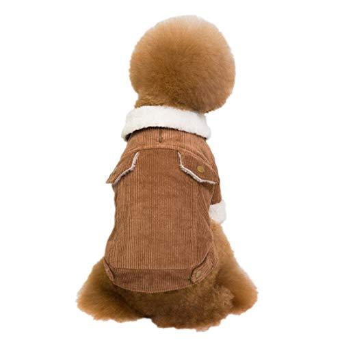 PZSSXDZW Herbst und Winter Pet Kleidung Plus Samtverdickung Zweibeinige Kleidung Lammkaschmir Cord dick Hundebekleidung Brown - Cord Bär Kostüm