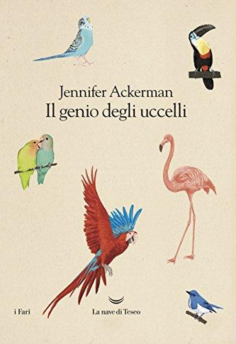 il-genio-degli-uccelli
