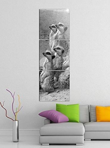 Leinwandbild 3tlg Erdmännchen Afrika Wüste Surikate schwarz weiß Bilder Druck auf Leinwand Vertikal Bild Kunstdruck mehrteilig Holz 9YA4997, Vertikal Größe:Gesamt 40x120cm