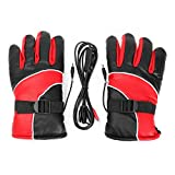 World2home 12V Warm Electric Heated Warmer Winter Gloves Motorcycle Scooter E-bike (Red)