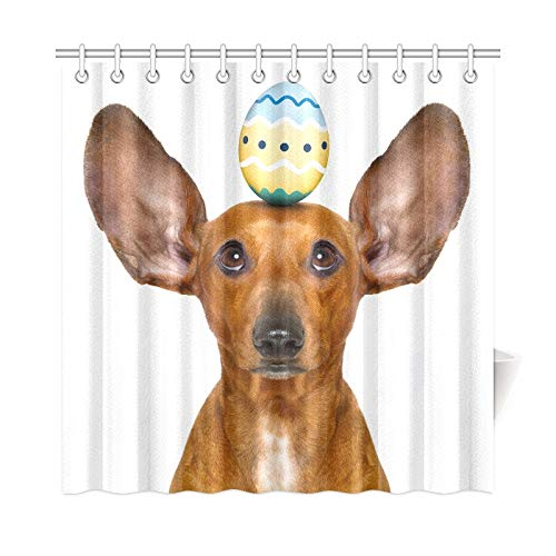 Dackel Kostüm Hase - JOCHUAN Home Decor Bath Curtain Funny Dachshund Sausage Dog Easter Bunny Polyester Fabric Waterproof Shower Curtain for Bathroom, 72 X 72 Inch Shower Curtains Hooks Included
