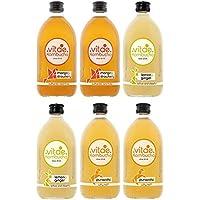 VITAE KOMBUCHA - Té Kombucha Ecológica Orgánico Fermentado Vegano, Pack de 6 Botellas de 500ml, 2 Pura Vida, 2 Limón y Jengibre, 2 Mango y Fresa | Kombutxa Orgánica ECO | Sabores con Frutas Maceradas
