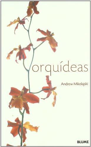 Orquideas por Andrew Mikolajski