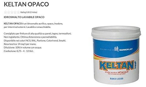 Smalto ad acqua - KELTAN - Bianco opaco L 0,75