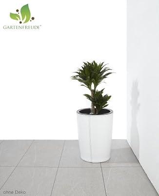 Gartenfreude Pflanzkübel in Leder-Optik für innen inkl. Bewässerungssystem Luxury Collection, 31x39cm (DxH)