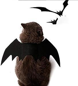 Kingus Déguisement d'Halloween ailes de chauve-souris pour animal domestique Motif vampire Halloween