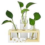 Floreros cilíndricos de vidrio, jarrón de vidrio para escritorio, bombilla con soporte de madera maciza retro para plantas hidropónicas, LOVE