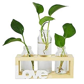 AOFOX Jarrón cilíndrico de cristal, maceta de cristal de escritorio con soporte de madera maciza retro, juego de 3 centros de mesa decorativos para plantas hidropónicas, decoración del hogar, jardín, boda (3 jarrones bombillas)
